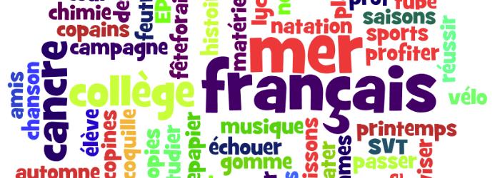 Faut-il mettre une majuscule au mot français ?