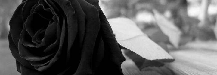 rose-noire-deuil