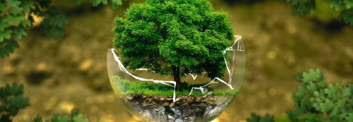 ecologie-digitale-francecopywriter